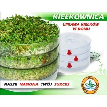 Контейнер для проращивания семян